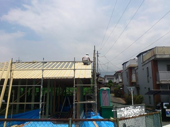 編集a-2013.7.9DSC_5939 ブログ用