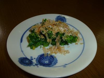 y-140418野菜畑(1)