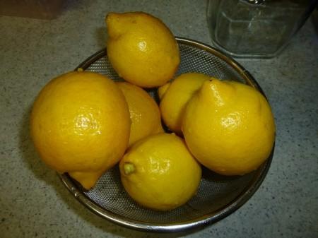 y-150403レモン塩(1)