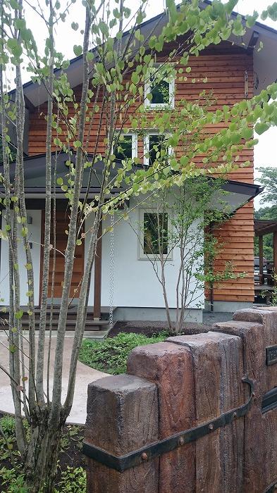 富士市 新築住宅 木と漆喰の外壁