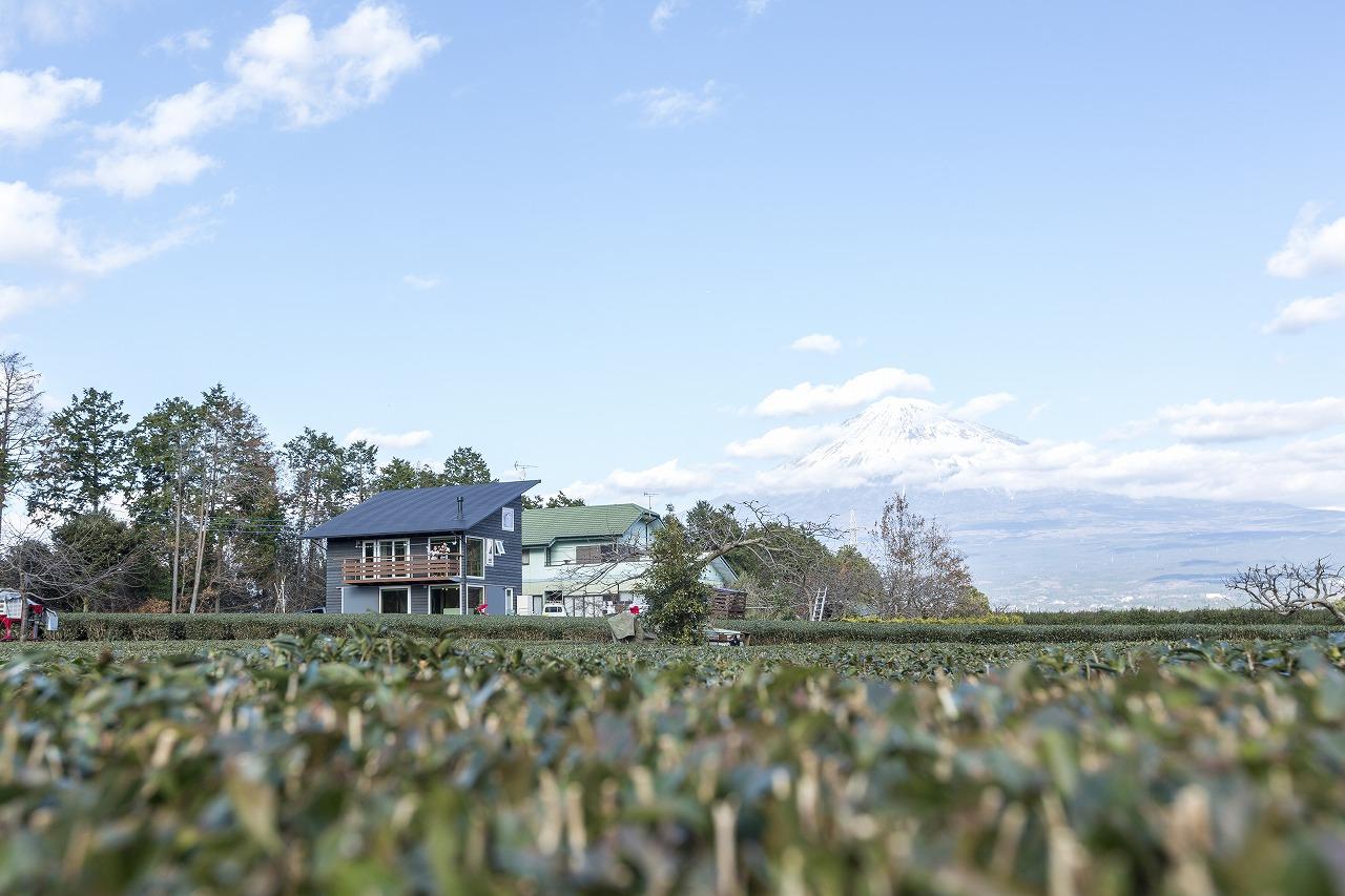 茶畑の中に建つ木の家と富士山