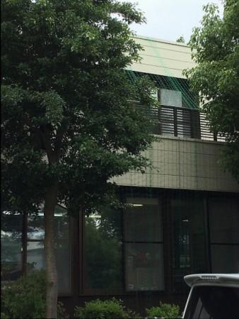 y-160615緑の(2)image2
