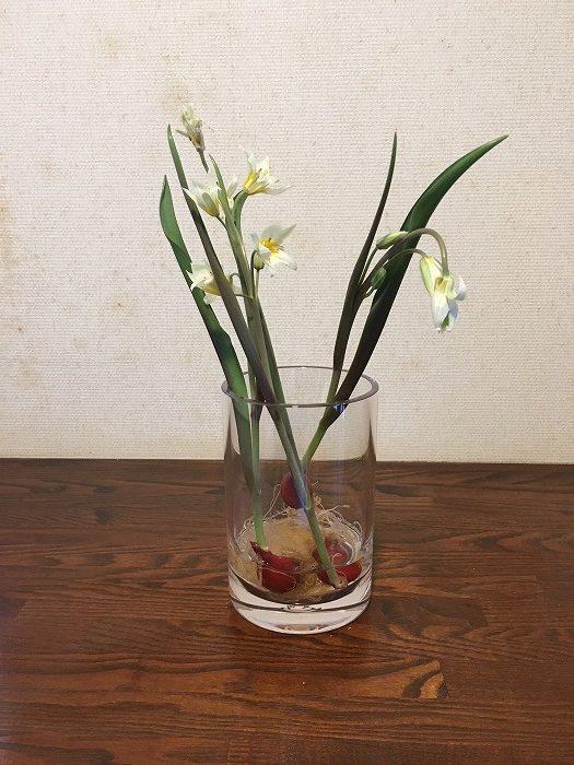 素敵なお花屋さん!